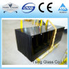 Black Bronze Green Blue Tempered Toughened Glass with Ce/ISO Certification