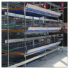 Broiler Poultry Feed Price H Type Chicken Cage Farm Equipment