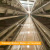 Poultry Farm Layer Cage /Chicken Egg Poultry Farm