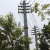 10kV Power Transmission Monopole Tower (tension tower)