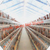 Morden Design and Appearence Steel Chicken Farm House