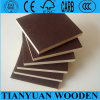 Construction Shutter Ply for Concrete Formwork