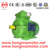 GOST Y2 Electric Motor AC Motor Asynchronous Motor Induction Motor