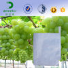 Peru Hotsale Water Resistant White Paper Fruit Protective Grape Bag
