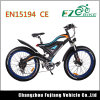 New Design Electrical Sport Mountain Bike Tde18