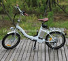 Foldable City Pedelec Lithium Battery Ebike for Lady