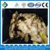 Chinese High Quality Fresh Ginger 250g up 2016