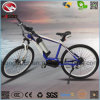Wholesale Electric Bike Bafang MID Motor Bicycle MTB E-Bike