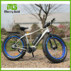 Attractive Fat Tire E Mountain Bicycle with Center Motor