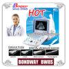 Digital Ultrasound Scanner (BW8S)