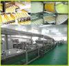 High Quality Industrial Swiss Roll Making Machine