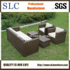 Outdoor /Garden Furniture- Wicker Modular/Sectional Garden Seating Set (SC-B9508)