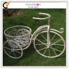 Bicycle Metal Flower Stand (PL08-5065)