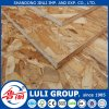 Professional 1220X2440X6-25mm All Kinds of Grade OSB Manufacturer