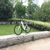 36V 250W 10ah Hidden Battery Road Electric Bicycle for Lady