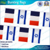 French and Israel National Bunting Flag (B*NF11F06025)