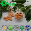Guangzhou Endless Vitamin C Powder Vitamin Tablet