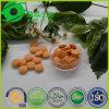 Guangzhou Endless Vitamin C Powder Vitamin Tablet