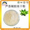 Freeze Dried Aloe Vera 200: 1 Extract Powder