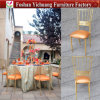 Gold Iron Frame Wedding Event Chair for Sale Yc-As50
