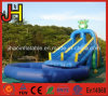 Double Lane Inflatable Frog Slide with Swimming Pool