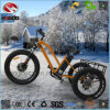 500W Fat Tire Electric Tricycle with Disk Brake