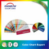 Architecture Coating Standard Color Fandeck Card for Advertising