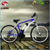 Electric Middle Motor Mountain Bike with Suspension