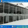 Galvanized Steel Frame Venlo PC Greenhouse