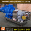 Stainless Steel Rotor Pump, Rotor Pump, Pump for High Viscosity Liquid