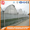 China Multi-Span Vegetable/ Garden Plastic Film Greenhouse