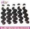 Hair Promotion Brazilian Wholesale Natural Human Hair