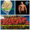 Semi Finished Steroids Liquid Trenbolone Enanthate with Vials