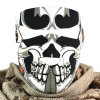 Motorcycle Racing Veil Full Face Grimace Mask (AM032)