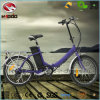 250W Electric Folding E Bike En15194 Mini Scooter