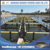 Tilapia Fish Floating Cage for Fish Farming in Lake