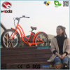 Electric Beach Bike Gift to Girl Lover Wife Friends