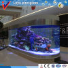 Clear Ornamental Plexiglass Fish Tank