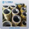 Gaskets Ss321.321fg. 321 Spiral Wound Gaskets Cgi ASME B16.20 (SUNWELL SEALS)