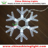 Snowflake Brigt LED Bulb Christmas Light
