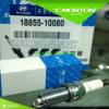 Spark Plug Ngk Silzkr6b-11 18855-10080 for Hyundai