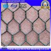 Hexagonal Wire Nettting with Galvanised/Hot Dipped/PVC Coated Iron Wire