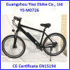 Power Assisted Electric Bicycle (PAB)