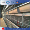 Jinfeng H Type Chicken Cage for Broiler Pullet Battery Layer Cage for Sale in Bengal Poultry Cage Fowl Cage