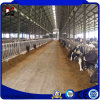 Fast Installing and Low Cost Prefab Steel Cow Farm House