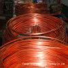 Pancake Coil Copper Tube(C10200)