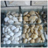 Colorful Cobble and Pebble Paving Stone