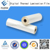 Glossy Pre-Glue BOPP Thermal Film (35mic)