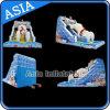 Summer Water Fun Inflatable Arctic Ocean Water Slide