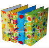 Wholesale Carton Printing Paper Lever Arch File Folder
